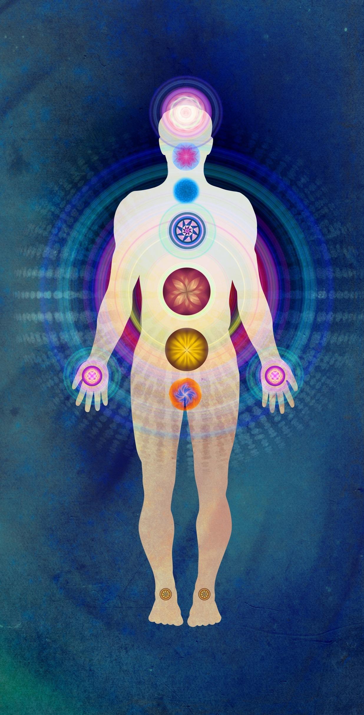 Know Your Body Mind Imbalances Vikruti Body Mind Spirit Guide